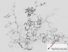 Custom Drawing-Sketch of flowers