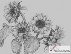 Custom Drawing-Sunflowers