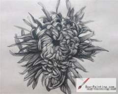 Custom Drawing-Chrysanthemum
