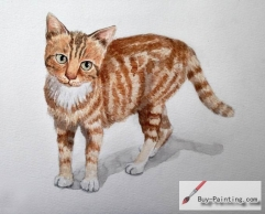 Watercolor painting-Original art poster-Brown cat