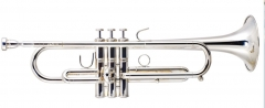 Silver Plated Trumpet Copper Body OEM Dropshipping...