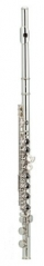 C Flute 16 Closed Holes Split-E key WoodWind Instr...