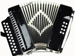 Entry Grade Accordion 21 Buttons 8 Bass Musical in...