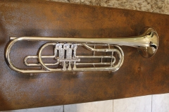 Bb Bass Trumpet Brass Body Lacquer Finish with Woo...