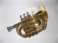 Bb Pocket Cornet Yellow Brass Body Lacquer Finish ...