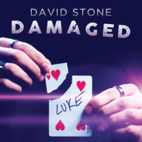 Damaged by David Stone