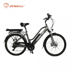 two seats electric bicycle China ebike with two batteries