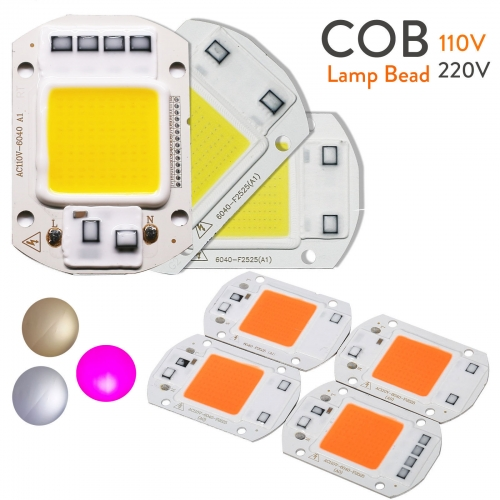 Ranpo LED COB Chip Floodlight 20W 30W 50W Smart IC Driver Grow Lamp Plant 110v 220v