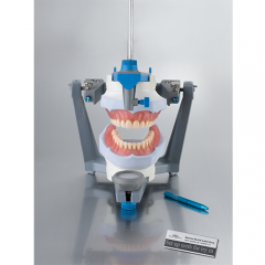 removable-full acrylic denture set up for try in