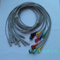 Compatible GE Electrophysiological Recording System 10 Lead Line GE Electrophysiological Lead Line 10 Lead Line