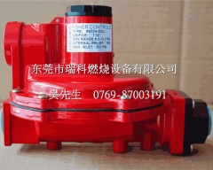 R622H-DGJ Fisher FISHER6 Sub-Caliber   Pressure Regulator   Fisher Red Pressure Regulator