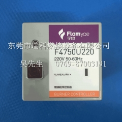 Flamyae Floating Flame F4750U220 Combustion Controller   Completely Replace Discontinued R4750C