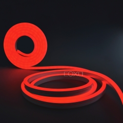 NA1018 LED Neon Light