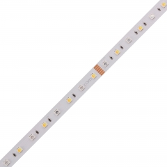 Cost-effective 3838 RGB+CCT LED STRIP