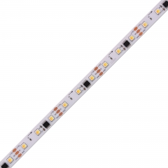WS2811 CCT Digital Bicolor LED Strip