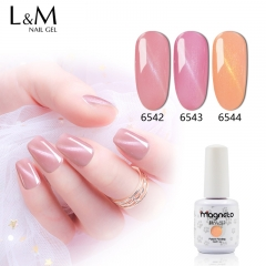 【Pink Cat Eye Gel 】1 Bottle Pink Cat Eye Gel Polish Cute Pink Magnet Nail Gel