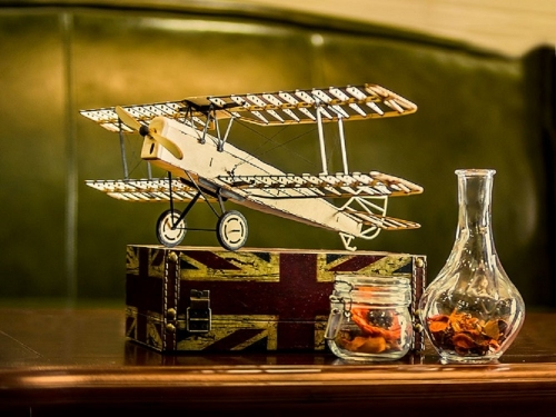 Free Shipping 3D Puzzles1:18 Tiger Moth DH-82 Wooden Model Display DIY Craft Handicrafts,Collection,Furnishing Decoration, Christmas Gift