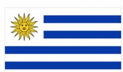 Uruguay Flag National Country Banner Super-Poly Indoor/Outdoor