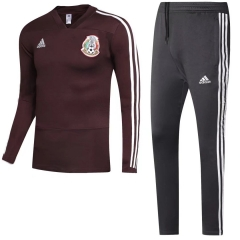 Youth Mexico Purple Red World Cup 2018 V Neck Training Suit
