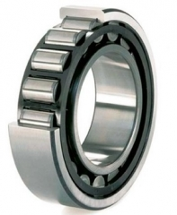 N series Cylindrical Roller Bearings