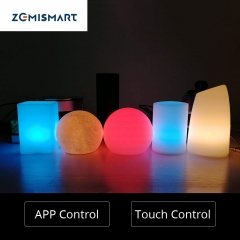 Christmas Gift LED Touch Light Luminaria Lighting Alexa Google Home Remote Lamp Battery Powered Children Light Usb Color Change