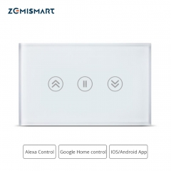 Zemismart Google Home Alexa Echo personalized Customization Customized Switch Switches Wifi APP Siri Control