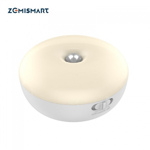 Zemismart Tuya Night Light Infrared Remote Control Body Smart Home Motion Lamp 110V 220V with US plug