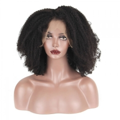 Kinky Curly 250% Density Full Lace Wigs Brazilian Virgin Hair Lace Front Human Hair Wigs Natural Hair Line
