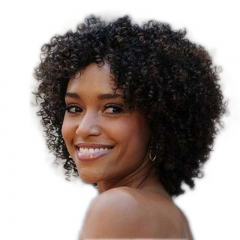 Short Afro Kinky Curly Wig Human Hair 130% Density Short Wig for Women Natural Black