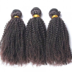 Mongolian Virgin Human Hair Lace Closure With 3 Bundles Afro Kinky Curly Weave