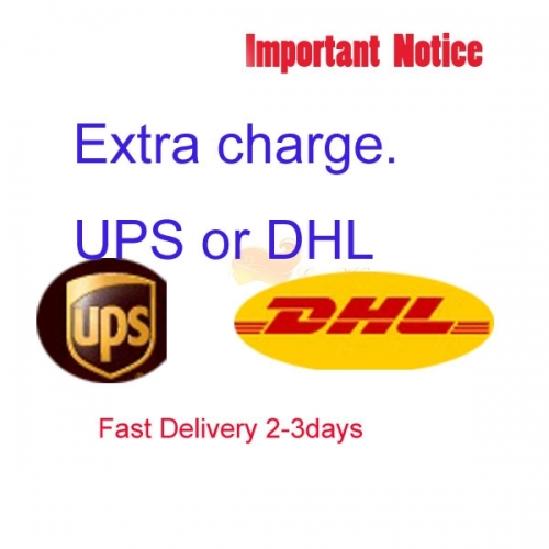 Extra fee for UPS or DHL shipping cost