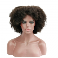 Afro Kinky Curly 180 High Density Human Hair Thick Full Lace Front Wig Pre Plucked