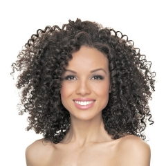 Eseewigs Jerry Curly Human Hair Lace Front Wigs For Black Women Natural Color Side Part Curly Glueless Human Hair Wigs Baby Hair