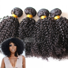 4pcs Hair Bundles 100% Brazilian Virgin Unprocessed Hair Weft 100g/pc