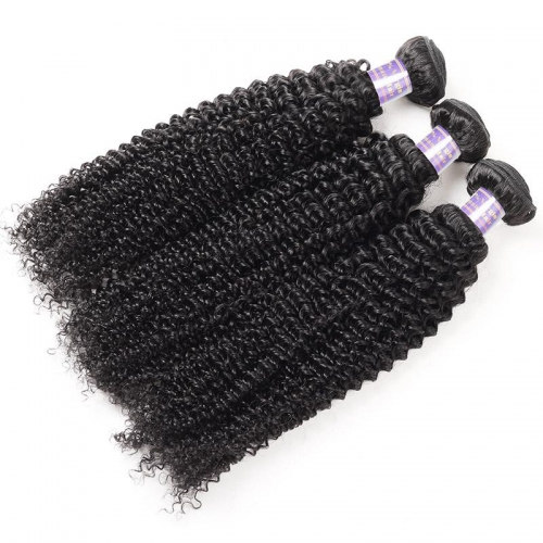 Eseewigs Hair Brazilian Kinky Curly 3 Bundles Virgin Human Hair