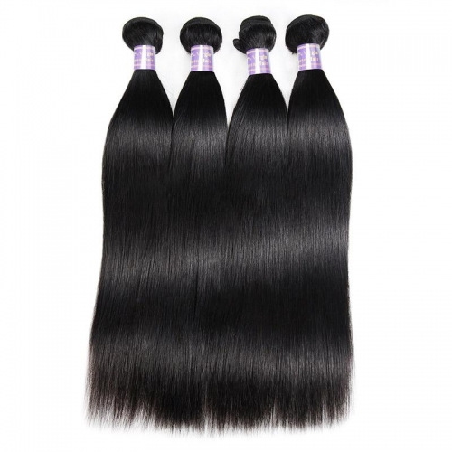 Eseewigs Malaysian Straight 4 Bundles Virgin Human Hair Extensions