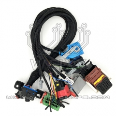 Test Platform Cable for Peugeot PSA (Continental Type)
