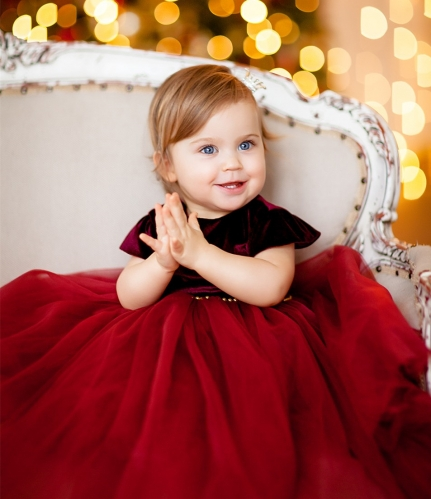 Red Velvet Tulle Flower Girl Dress Party Dress