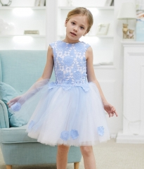 Blue Lace Tulle Knee Length Flower Girl Dress Party Dress