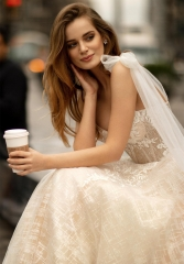 Champagne Lace Tulle Short Train Wedding Dress