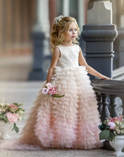 Chamapgne Mauve Beaded  Flower Girl Dress Party Dress Pageant Dress Toddler Dress