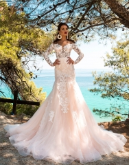 Ivory  Lace Chamapgne Tulle Mermaid Wedding Dress Bridal Gown