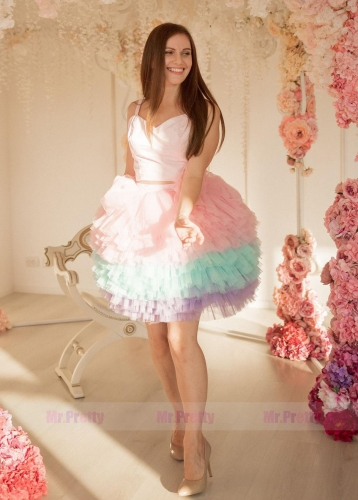 Colorful Tutu  Short Wedding Skirt 2 Pieces photo Shoot Dress