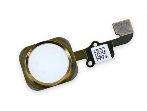 Home Button With Flex Cable No Touch ID For iPhone