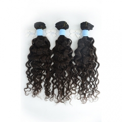 Peruvian-Italy Curly