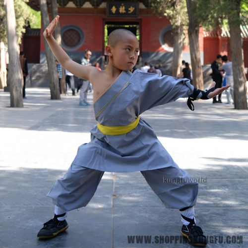 Gray Cotton One Sleeve Shaolin Monk Suit Martial arts Uniform