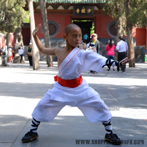 White Color One-sleeve Shaolin Monk Uniform  Kung fu Tai chi Martial arts Wing Chun Suit