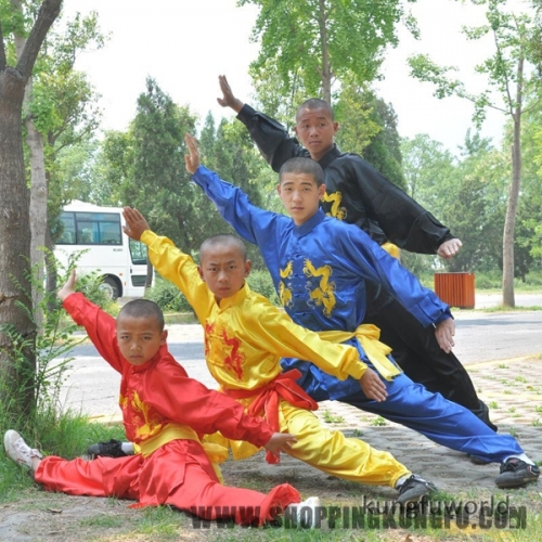 Kids Adults Silk Embroidery Tai Chi Uniform Martial arts Wing Chun Kung fu Suit