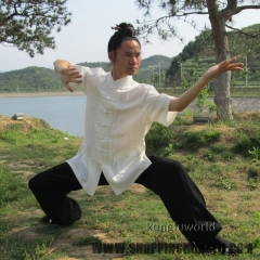 Linen Tai chi Uniforms Shortsleeves Chinese Kung fu Suit Martial arts Uniforms