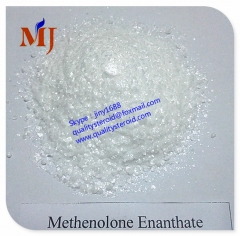 Methenolone Enanthate/Primobolan Injection